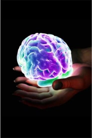 Beyninizin cinsiyetini biliyor musunuz?